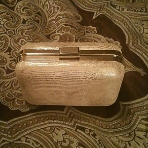 Elegant Clutch Purse